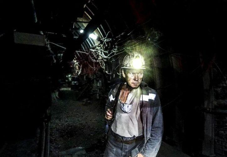 En México 'se necesitan técnicos especialmente en el sector manufactura, minería, electricidad, gas y agua; construcción, transporte y comunicaciones, y turismo'. (Foto de contexto de Notimex)