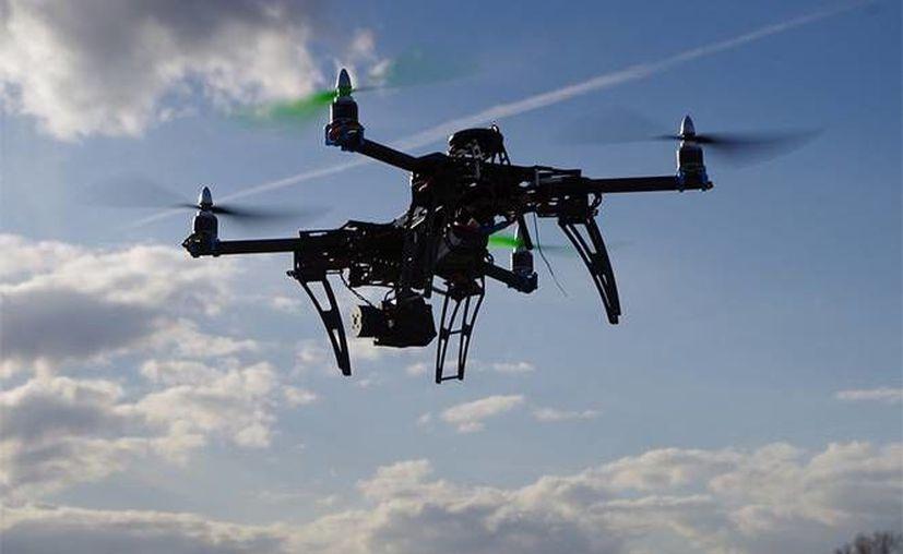 Drones detectaron plantíos de marihuana en terrenos del Estado de México. La droga, ya procesada, alcanza valor de 17 mdd en el mercado negro. (Archivo/excelsior.com.mx)