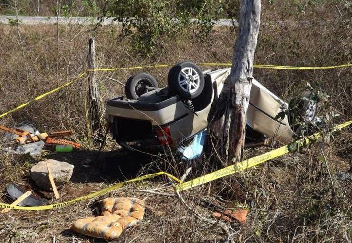 Un árbol de jabín detuvo la carrera del vehículo en el que viajaban los hermanos oriundos de Cozumel. (Luigi Domínguez/SIPSE)