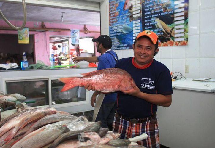 El incentivo federal es de ocho mil pesos por pescador, que sirve para que continúen con su actividad y comercialicen el producto. (Edgardo Rodríguez/SIPSE)
