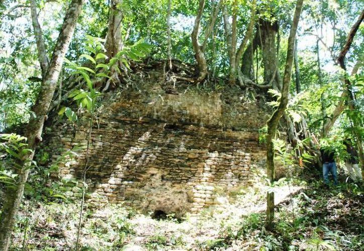 La zona arqueológica maya tiene 34 hectáreas. (Redacción/SIPSE)