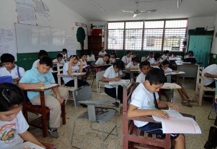 Los días jueves y viernes la prueba Enlace, será aplicada a los estudiantes restantes. (Harold Alcocer/SIPSE)