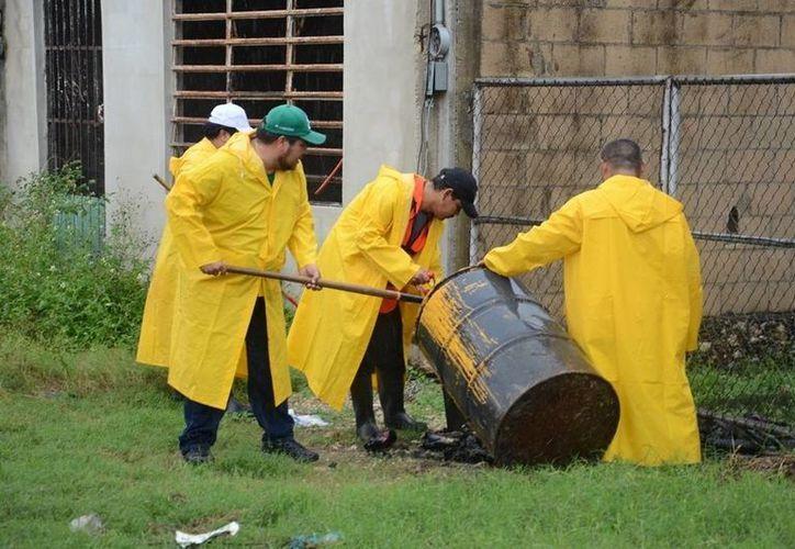 Las brigadas de limpieza ya están siendo integradas para realizar los trabajos en el municipio; también habrá fumigaciones. (Manuel Salazar/SIPSE)
