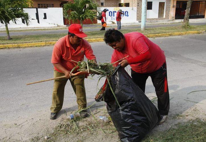 Fueron recolectadas 22 toneladas de basura en el sector centro la calzada Veracruz y las avenidas Universidad e Insurgentes. (Redacción/SIPSE)