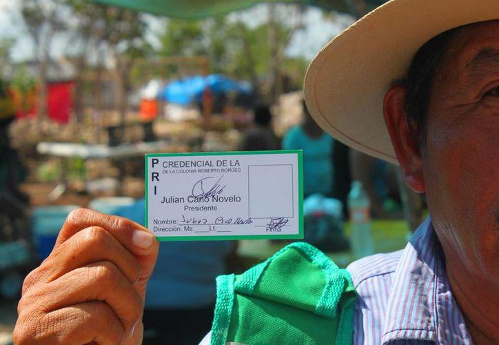 Los habitantes irregulares de los predios aledaños a In House están credencializados y afiliados al PRI. (Daniel Pacheco/SIPSE)