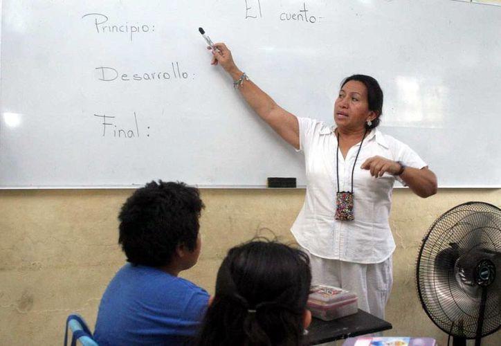 El profesor debe acostumbrarse a ser evaluado, como en la Medicina para poder ejercer la profesión docente. (Milenio Novedades)