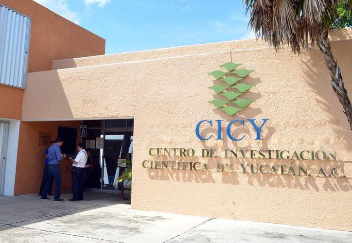 La agroindustria es uno de los ámbitos económicos con los que considera vincularse el Instituto Mexicano de la Propiedad Industrial. (Milenio Novedades)