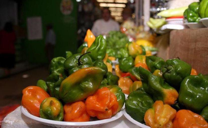 Productores yucatecos recibirán el documento de la Entidad Mexicana de Acreditación para el picante; comercialización. (Milenio Novedades)