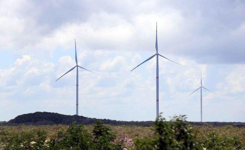 Además del parque eólico de Tizimín, están en proceso de ser abiertos los que están en Progreso, Dzilam de Bravo e Izamal.