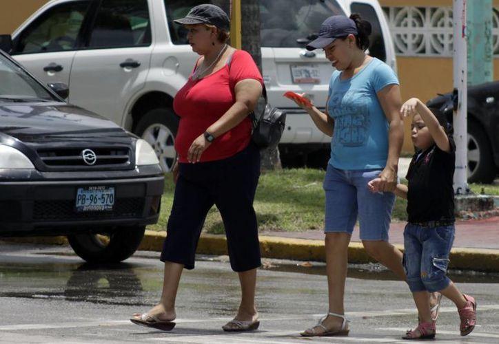 Las personas provienen principalmente de Yucatán, Veracruz y Tabasco. (Paloma Wong/SIPSE)