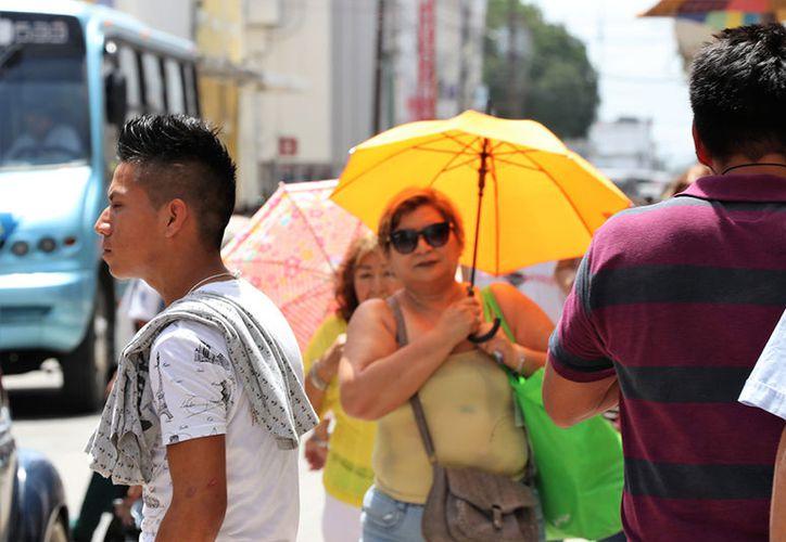 El calor extremo regresa para este fin de semana. (Daniel Sandoval/ Milenio Novedades)