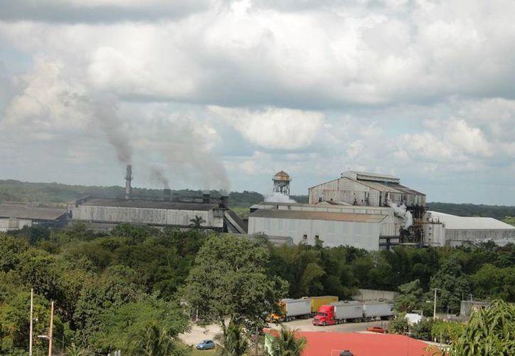 En la zafra 2014-2015 se produjeron 145 mil toneladas de azúcar y la proyección para 2017 es alcanzar las 200 mil toneladas. (Gerardo Amaro/SIPSE)