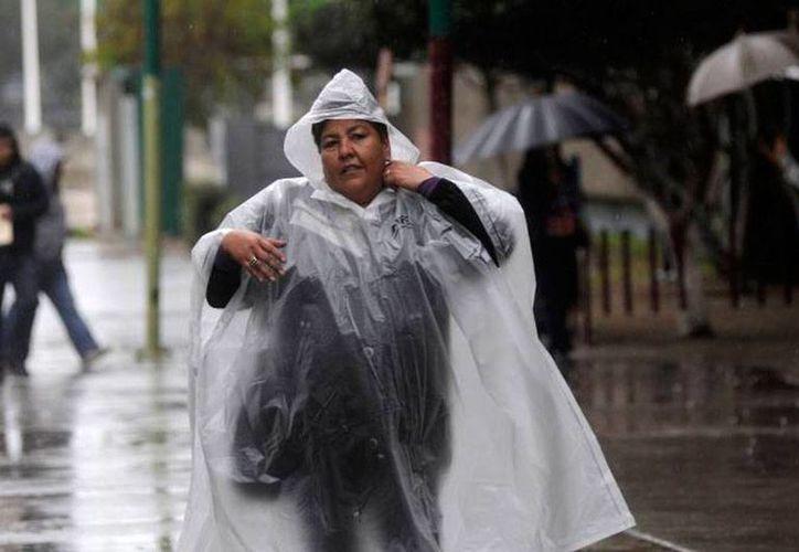 El 1 de junio empieza la temporada de huracanes, por lo que las autoridades ya se preparan para una eventual emergencia.(Imagen de contexto/Milenio Novedades)