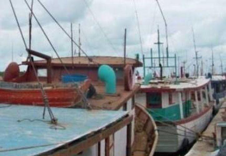 Las flotas mayor y mediana de Yucatán ya pueden hacerse a la mar sin ningún problema. (Óscar Pérez/SIPSE)