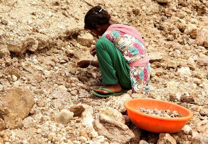 Una niña de la India fue abandonada por sus padres adoptivos por tener 13 años y no siete, en España. (Reuters)