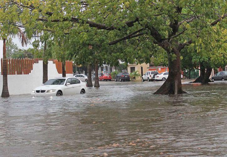 Algunos autos se quedan atrapados en el agua cuando se registra alguna contingencia meteorológica. (Jesús Tijerina/SIPSE)