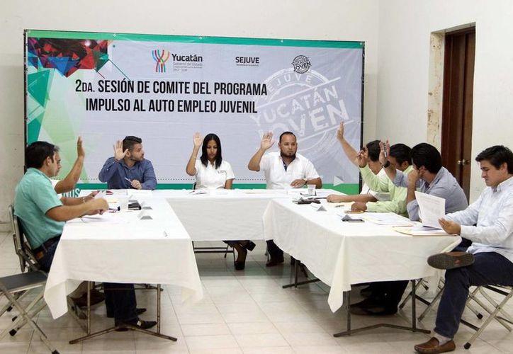 La titular de la Secretaría de la Juventud, Alaine López Briceño, dijo que hay cada vez más jóvenes interesados en desarrollar proyectos sobre el medio ambiente.  (Cortesía)
