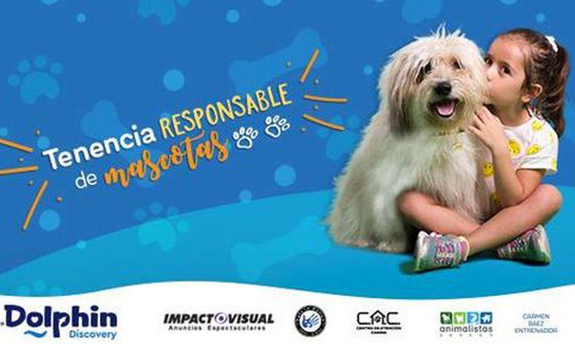 La intención de la campaña es una buena responsabilidad hacia los animales, y evitar la sobre población de perros y gatos en la ciudad. (Foto: Redacción/SIPSE)