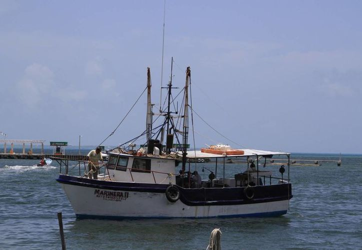 Planean exportar productos agrícolas y pescado. (Victoria González/SIPSE)