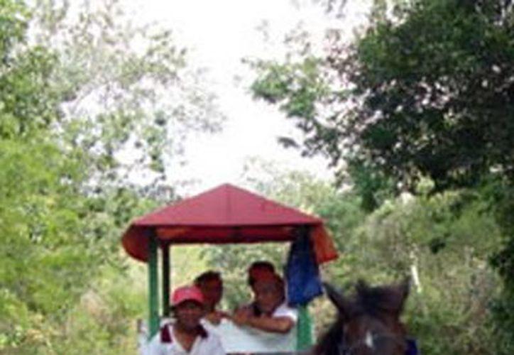 """""""Los tres cenotes de Cuzamá"""". (SIPSE)"""