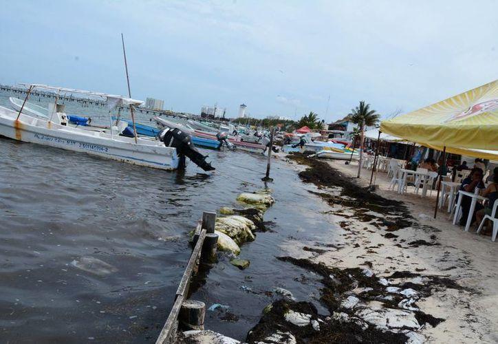 Entre los concesionarios existen hoteles, marinas, restaurantes, entre otros. (Victoria González/SIPSE)