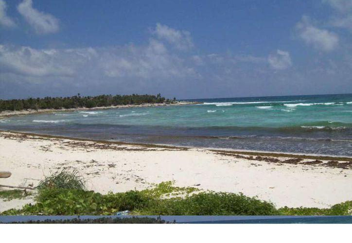 Se prepara un proyecto para determinar la capacidad de recuperación de las dunas del sistema litoral Punta Molas, para saber si se puede seguir extrayendo arena de dicha zona. (Irving Canul/SIPSE)