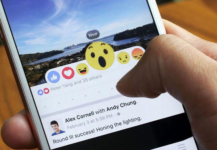 Ya puedes hacer más divertidos tus comentarios de Facebook gracias al buscador de GIFs. (Foto: Contexto/Internet)