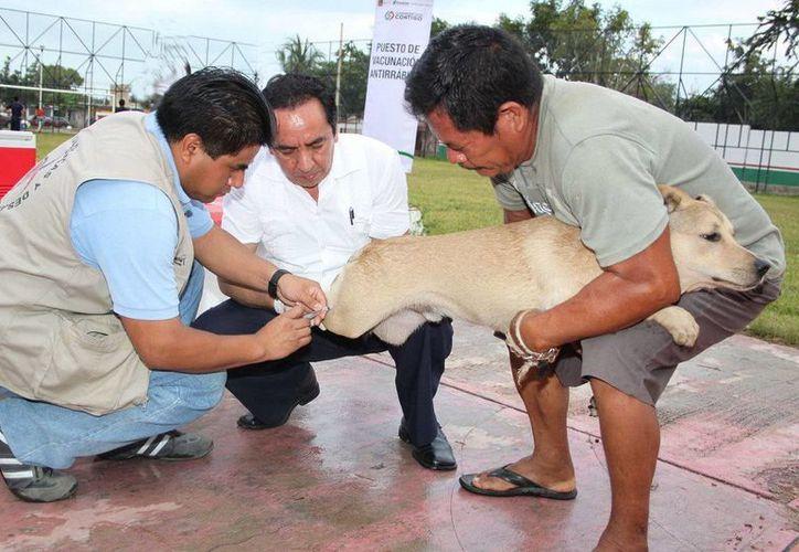Las vacunas se aplicarán del 20 al 26 de septiembre en Chetumal. (Redacción/SIPSE)