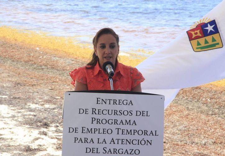 Aseguran que el programa se aplicará de manera inmediata en el Estado. (Tomás Álvarez/SIPSE)