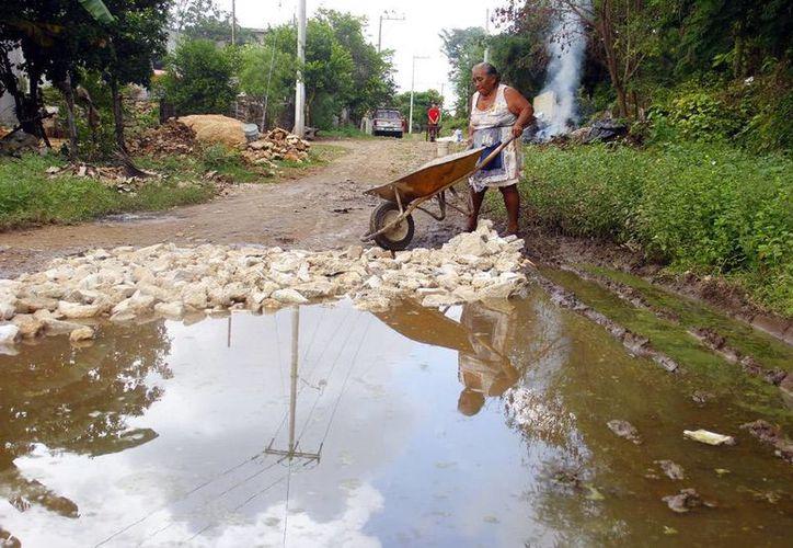 Según información de la Secretaría de Salud, el dengue en Yucatán ya cobró la vida de 3 personas. Imagen de contexto de los charcos que forma el agua de lluvia, y que se convierten en criadero del mosco aedes aegypti, transmisor de la enfermedad. (Juan C. Albornoz/SIPSE)