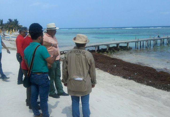 Se contrató maquinaria pesada para la limpieza de predios y levantamiento de sargazo en 2.7 kilómetros de la zona de playas.