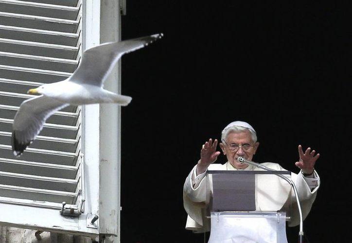 El Papa durante la ceremonia del Angelus dominical. (AP/Foto de archivo)