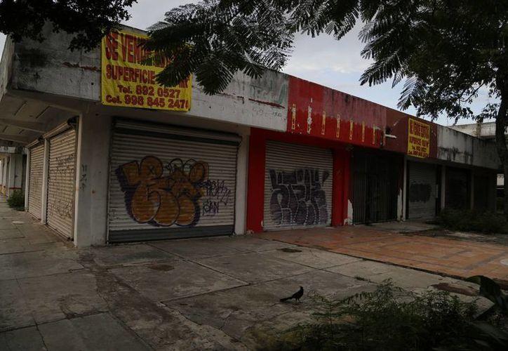 Cerraron 30 establecimientos por la actividad de la delincuencia Cancún. (Israel Leal/SIPSE)