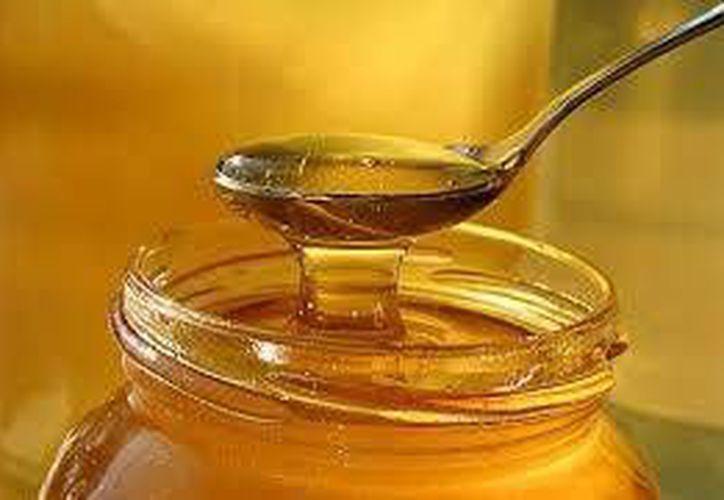 El principal producto que se exporta a los mercador internacionales es la miel orgánica. (Foto de Contexto/Internet)
