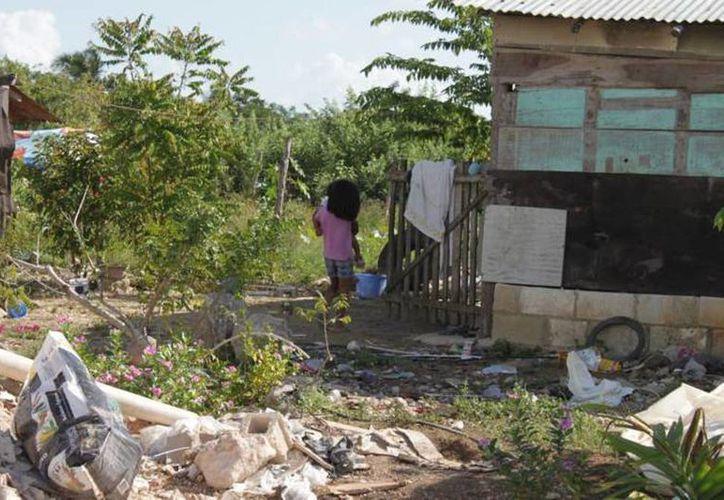 La mayoría de los mexicanos enfrenta algún nivel de pobreza o algún tipo de vulnerabilidad o carencia social, aseguró la  la Dra. Julieta Morales Sánchez, directora general del Centro Nacional de Derechos Humanos en la CNDH. (Archivo/SIPSE)