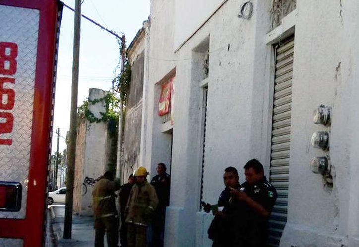 Los bomberos llegaron hasta el lugar de la emergencia. (Victoria González/SIPSE)