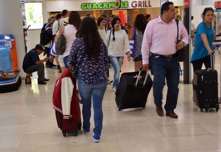 Aerolíneas abren opciones pet friendly para quienes viajan con sus mascotas.(Luis Soto/SIPSE)
