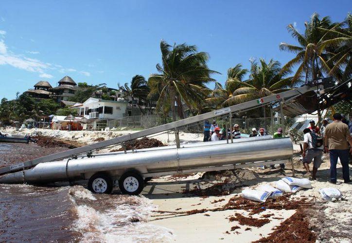 La máquina recogedora de sargazo se probó con éxito ayer en Playa del Carmen. (Octavio Martínez/SIPSE)