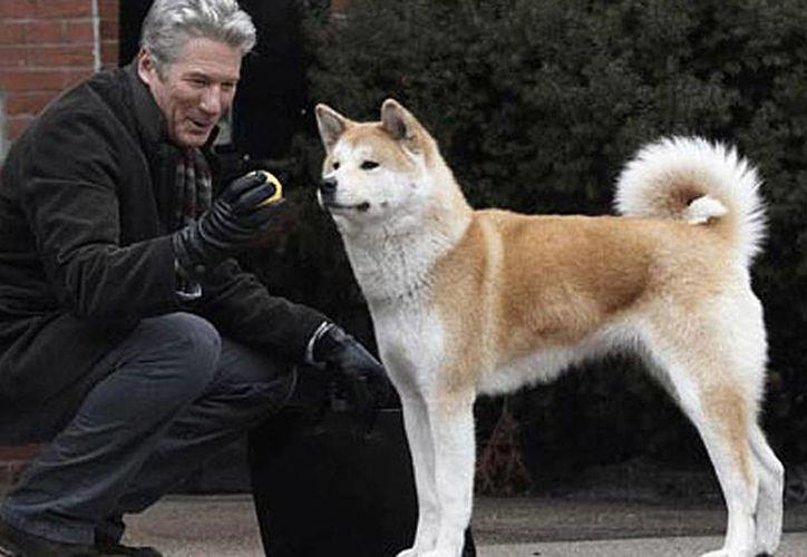 """La cinta """"Hachi: A Dog's Story"""" protagonizada por Richard Gere está basada en la historia del perro japonés Hachiko. (Internet)"""
