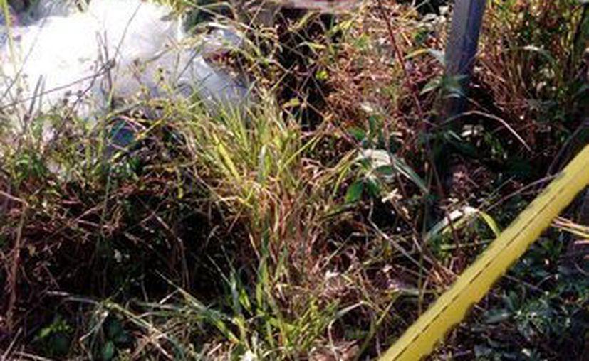 El cuerpo sin vida de don Francisco fue encontrado en la vera de la carretera  Mérida-Acanceh. Buscan a familiares para reclamar su cuerpo en la FGE. (SIPSE)