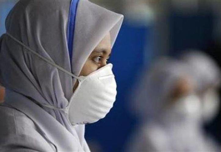 El nuevo virus está relacionado con el de la gripe aviar. (Archivo Agencias)