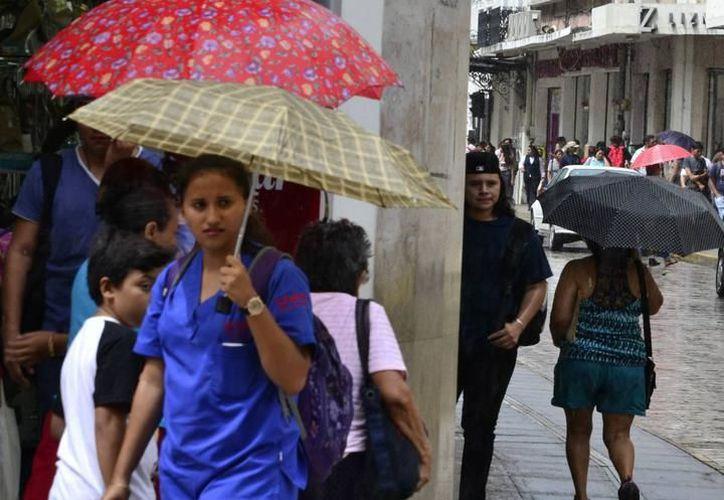 Además de lluvia, se esperan temperaturas cálidas por la mañana y muy calurosas durante el día. (Milenio Novedades)