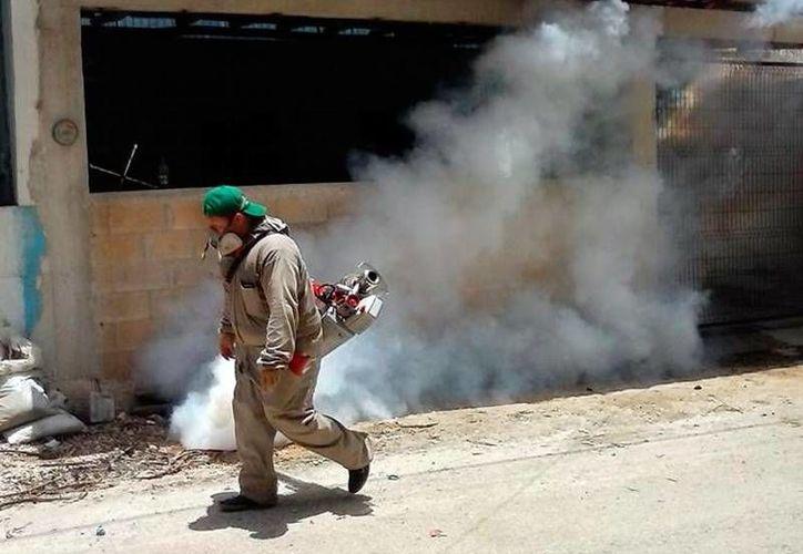 Labores de fumigación para frenar la reproducción de mosco Aedes aeypti, transmisor del dengue, zika y chikungunya. (Archivo/Milenio Novedades)