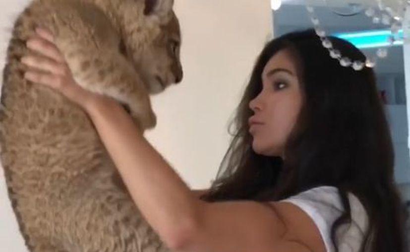 Una modelo se llevó una sorpresa cuando replicaba la escena emblemática de El Rey León. (Impresión de pantalla)
