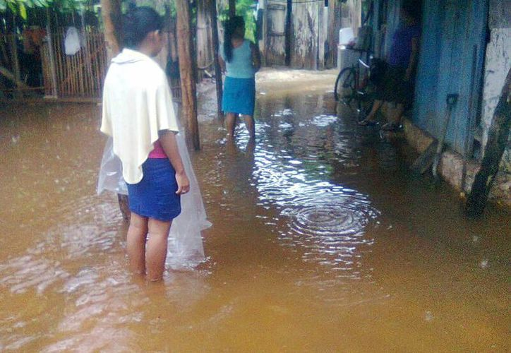 Las autoridades no tienen cuantificados los daños en la zona sur de Q. Roo. (Jorge Carrillo/SIPSE)