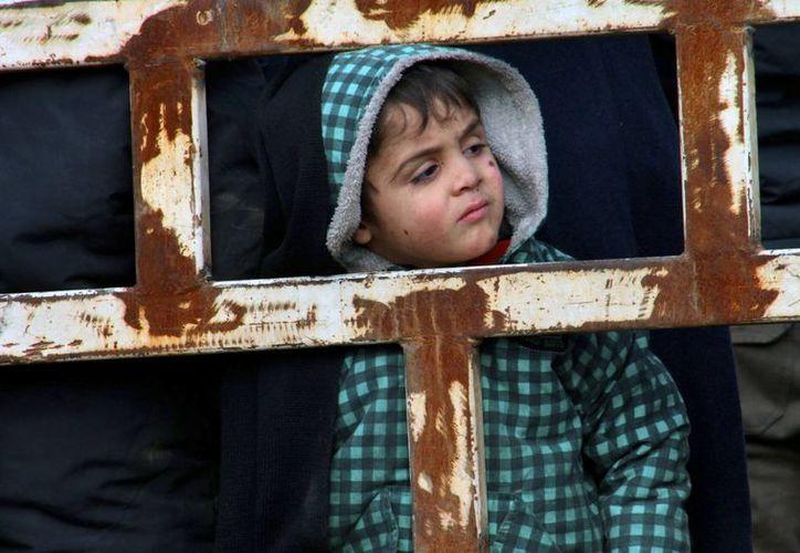 Imagen de un niño dentro de una camioneta, en la cual fue evacuado junto a su familia de Alepo. (Alepo 24 vía AP)