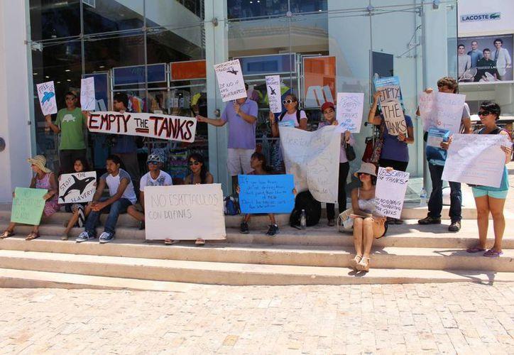 El contingente que se manifestó ayer, forma parte de un movimiento que promueve el cierre de los delfinarios en más de 100 países. (Luis Ballesteros/SIPSE)