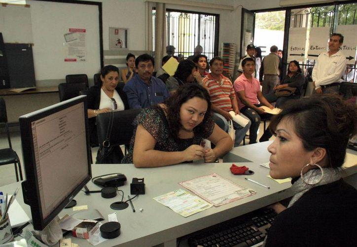 Numerosas personas acuden a diario a realizar trámites al Registro Federal de Electores. (Milenio Novedades)