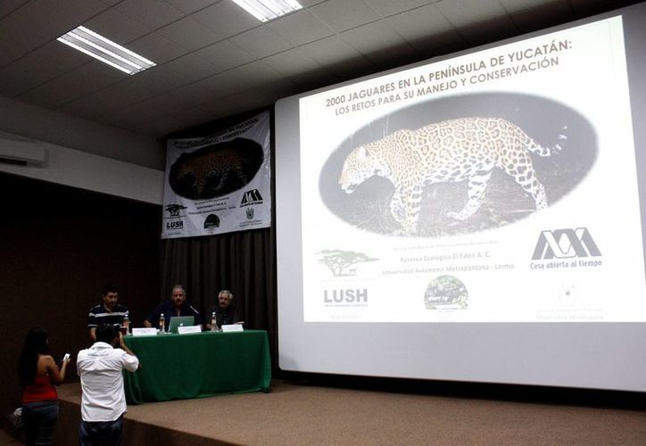 """Los investigadores conformaron el grupo """"La voz del jaguar"""". (Francisco Gálvez/SIPSE)"""
