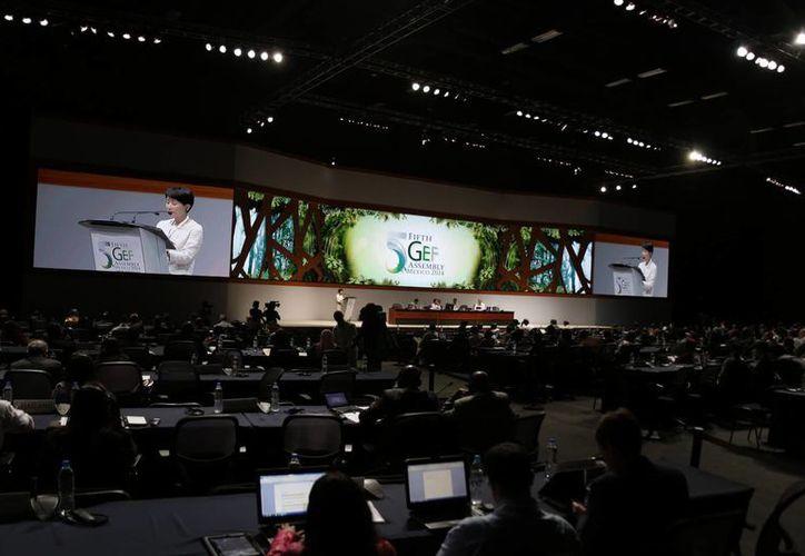 Se anunciaron los recursos en el marco de la reunión del Fondo para el Medio Ambiente Mundial. (Israel Leal/SIPSE)